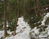 A solid snow base/monorail on the trail
