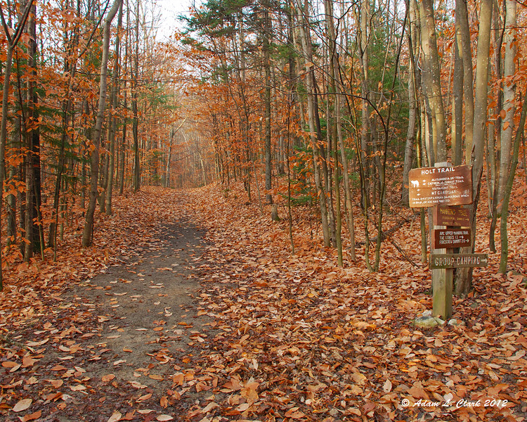 After leaving the AMC lodge, the Holt Trail follows and old woods road
