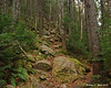The trail gets steep and rocky as it climbs up to Noon Peak
