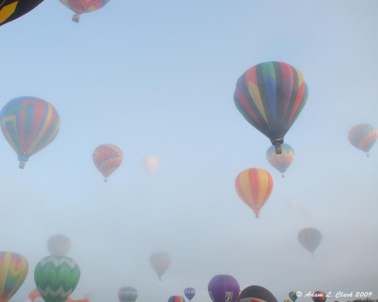 BalloonFest1443-L.jpg